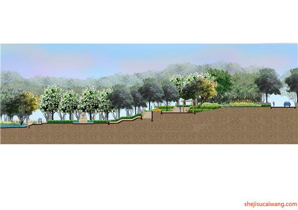 部分奥雅景观彩平图设计详情2
