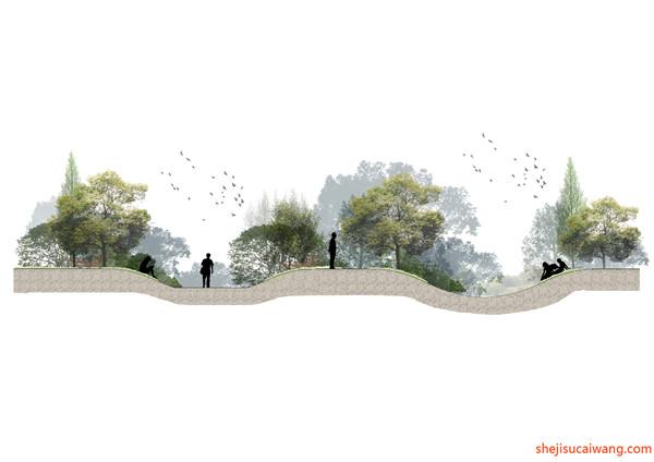 部分奥雅景观彩平图设计详情1