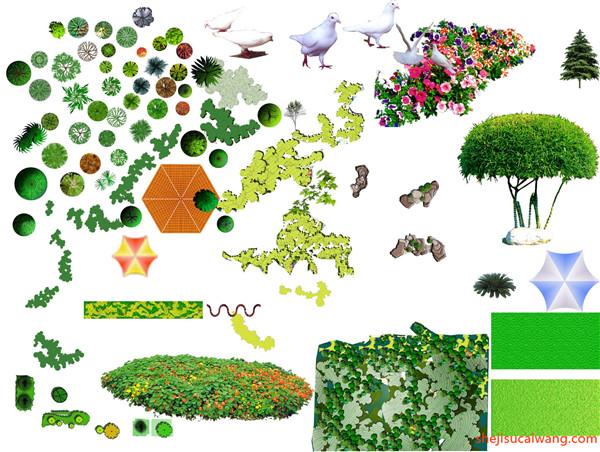 园林平面植物