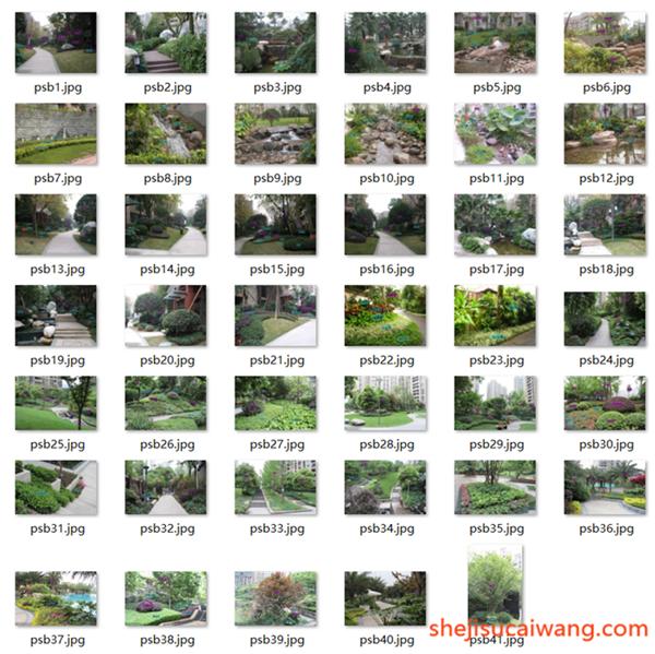 150张植物配置解析