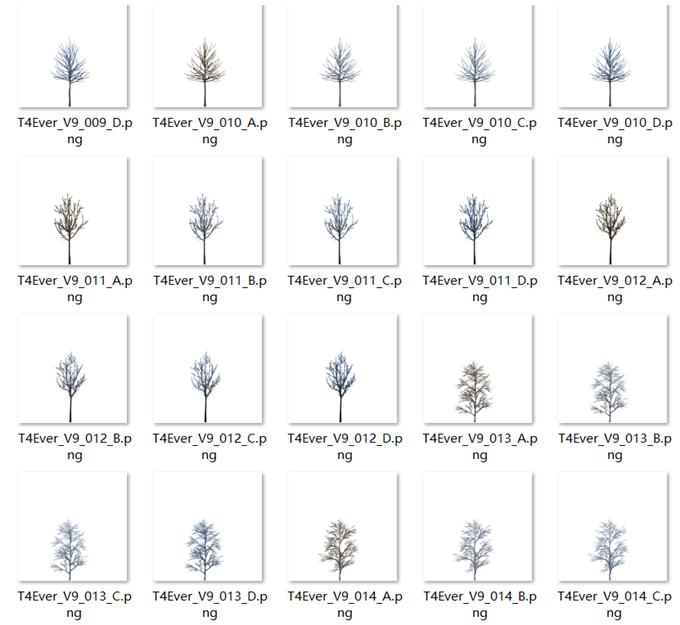 700张后期植物素材