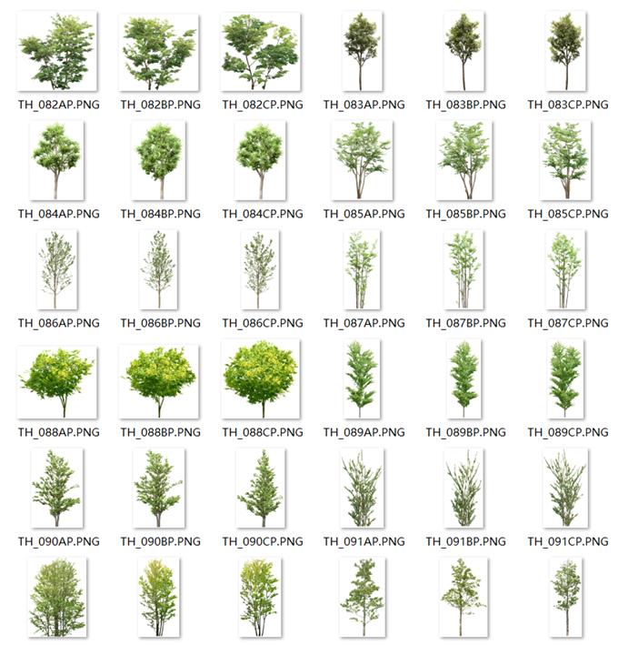 180张绿色树