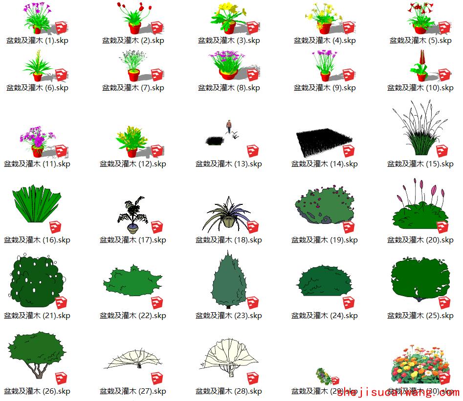 盆栽及灌木植物