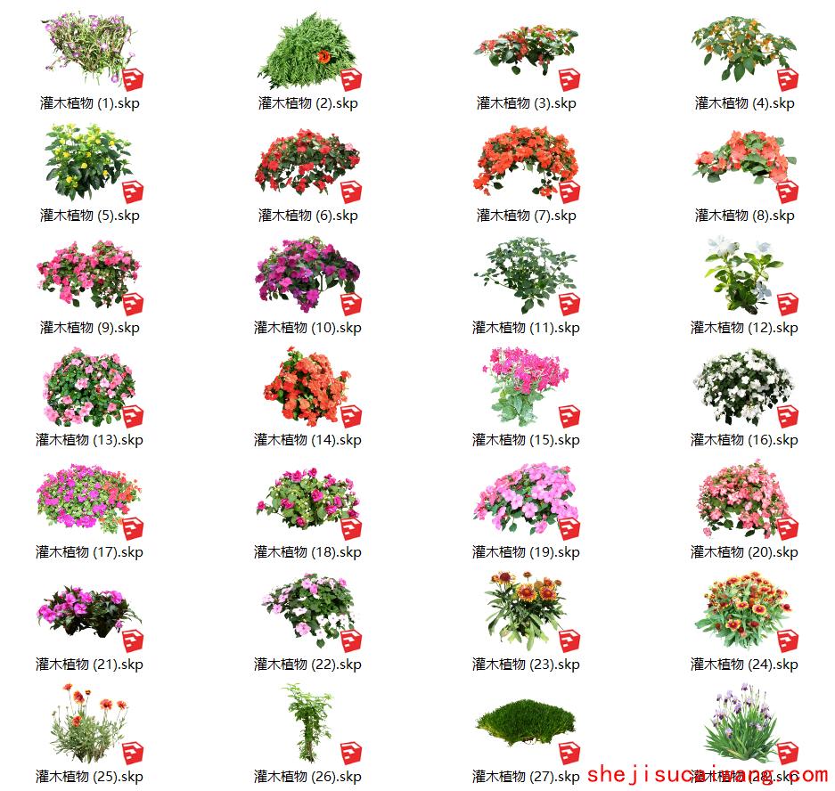 花卉灌木植物组件全集C
