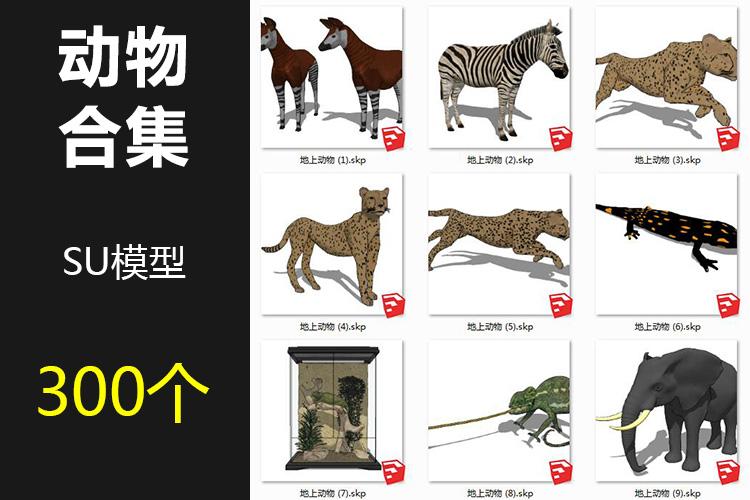00动物SU模型1