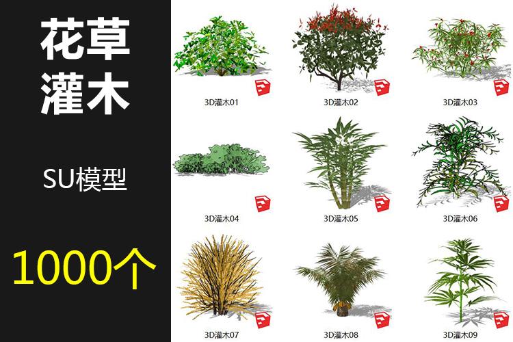 00花草灌木SU模型