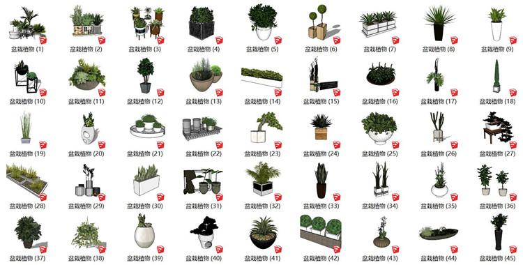 02植物盆栽SU模型1
