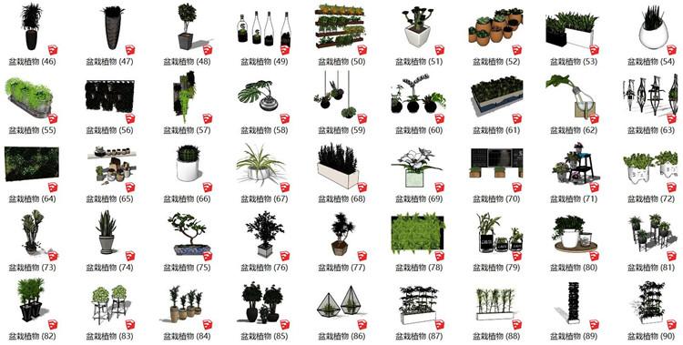 03植物盆栽SU模型2
