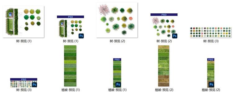 04景观PSD植物类精选