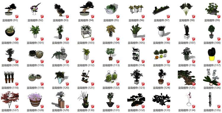 04植物盆栽SU模型3