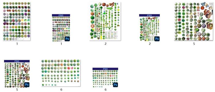06景观PSD植物类图片