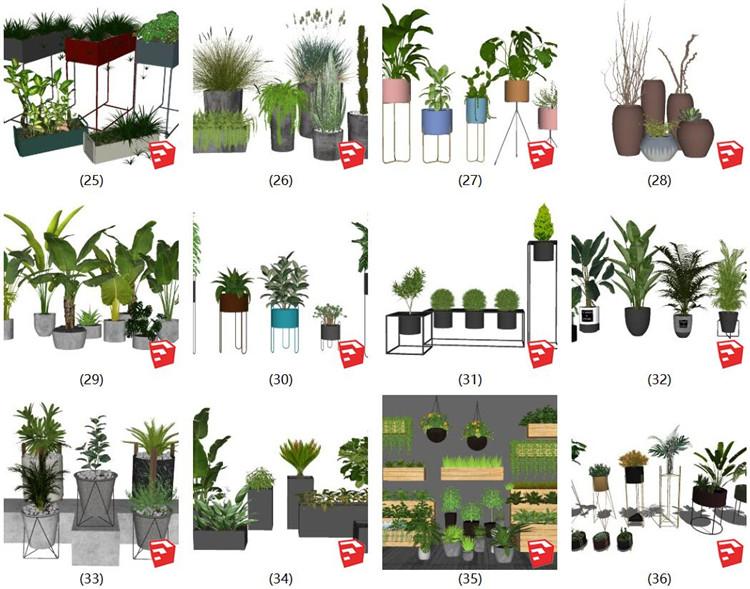 07植物盆栽SU模型3