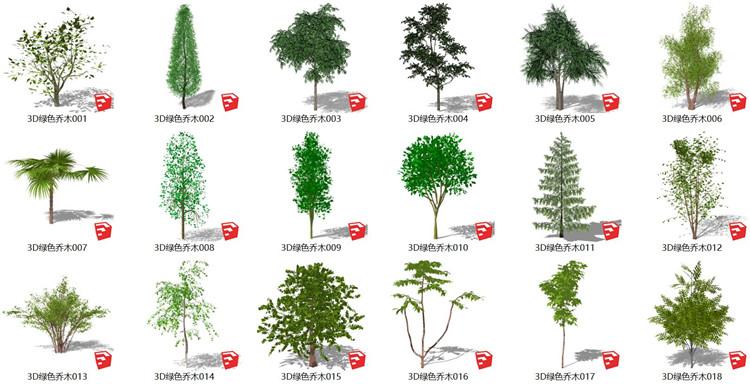 07绿色乔木SU模型