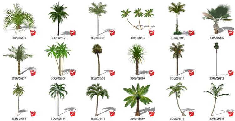 08热带树SU模型