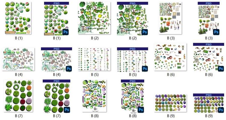 10手绘PSD植物平面图