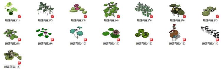10莲花睡莲荷花SU模型