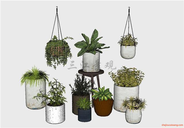 花钵植物盆栽花架SU模型1