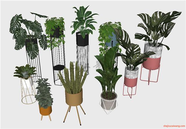 花钵植物盆栽花架SU模型3