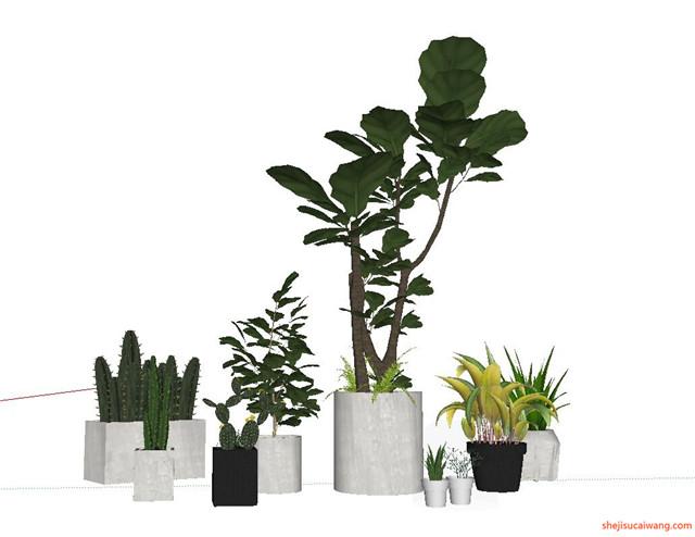 花钵植物盆栽花架SU模型6